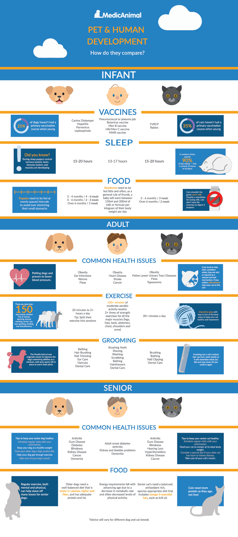 Infograpgic Live Cycle of pets