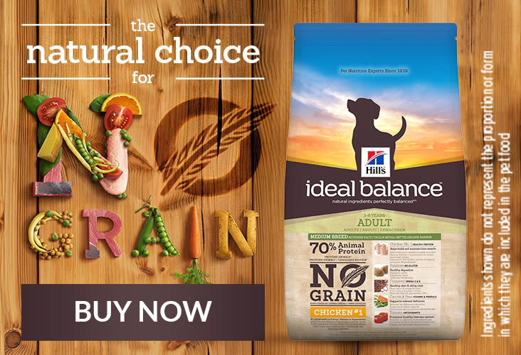 Buy Hill's Ideal Balance - The natural choice for no grain