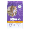 IAMS Kitten & Junior - Poulet