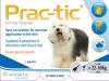 Prac-tic Spot-On Large Dog