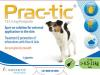 Prac-Tic Flea & Tick Treament for Small Dogs (4.5-11kg)