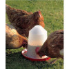 Savic Aviary Feeder