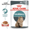 Royal Canin Intense Hairball 34 Adult Wet Cat Food - Gravy