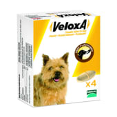 Veloxa Chewable Worming Tablets packaging