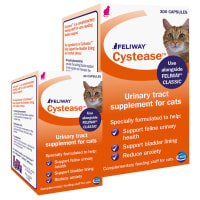 Cystease Advanced für Katzen