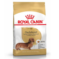 Royal Canin Dachshund Hunde Adult Trockenfutter