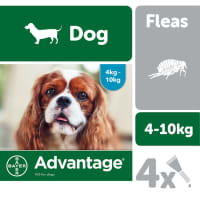Advantage 100 for Dogs 4-10kg