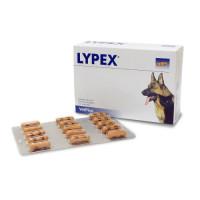 Lypex Kapseln