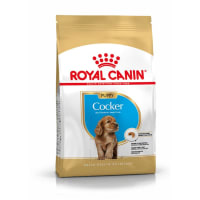 Royal Canin Cocker Hunde Puppy Trockenfutter