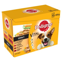 Pedigree Adult Wet Dog Food Pouches Mixed Selection in Gravy