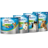 Purina Dentalife Daily Larger Dog Chews Treat