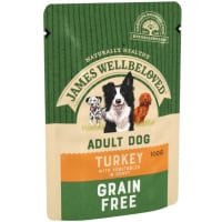 James Wellbeloved Grain Free Adult Turkey Wet Dog Food Pouch