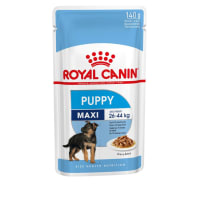 Royal Canin Maxi Puppy Wet Dog Food