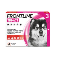 FRONTLINE Tri-Act Flea & Tick Treatment for X Large Dog (40-60kg) 3 Pack