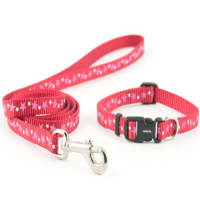 Ancol Puppy Collar and Lead Set Stars Red