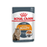 Royal Canin Adult Intense Beauty Wet Cat Food