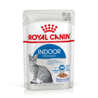 Royal Canin Indoor Adult Sterilized Wet Cat Food - Jelly