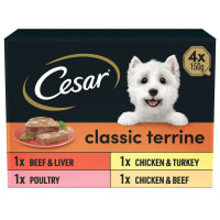 Cesar Classics Terrine Adult Wet Dog Food - Mixed Selection