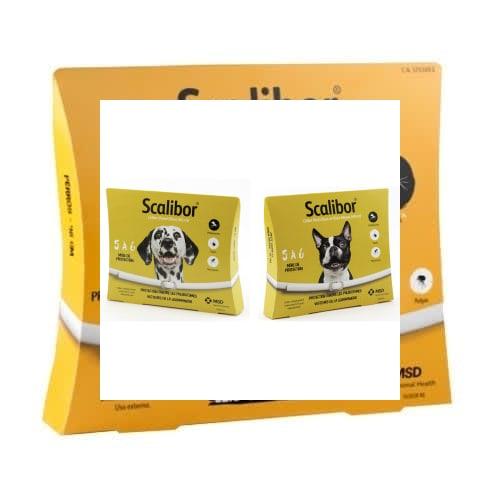 Collier Scalibor - Chien