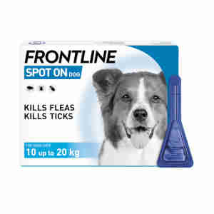 Frontline Spot On for Medium Dogs (10-20kg)