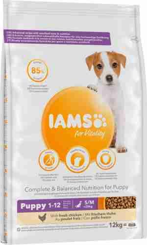 IAMS – Puppy & Junior kleine/mittlere Hunderassen