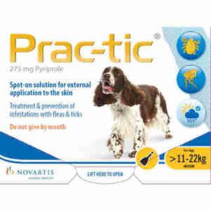 Prac-tic Spot-On voor middelgrote honden