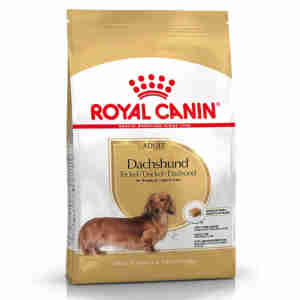 Royal Canin Dachshund 28 Adulte (Teckel)
