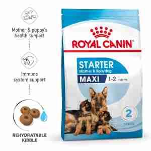 Royal Canin MAXI Starter für tragende Hündin und Welpen