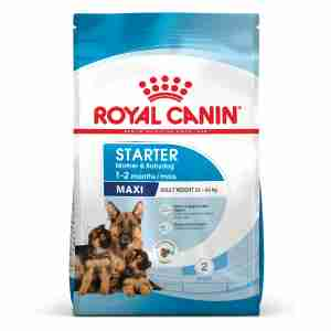 Royal Canin Maxi Starter - Chiennes & Chiots