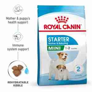 Royal Canin MINI Starter für tragende Hündin und Welpen