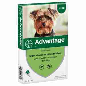 Advantage voor honden (4-10kg)