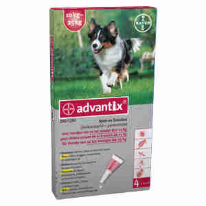 Advantix 250 middelgrote honden 10-25kg
