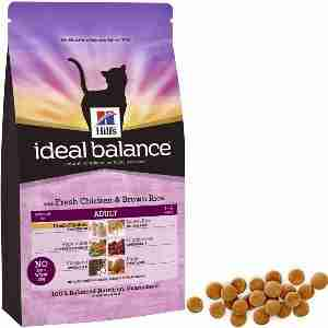 Hill's Ideal Balance Feline - Chat Adulte