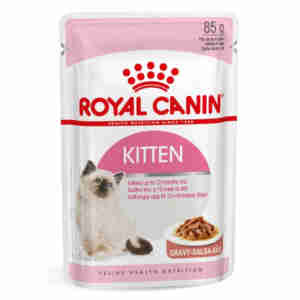 Royal Canin Kitten in Gravy Wet Food