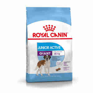 Royal Canin Giant Junior Active Hundefutter