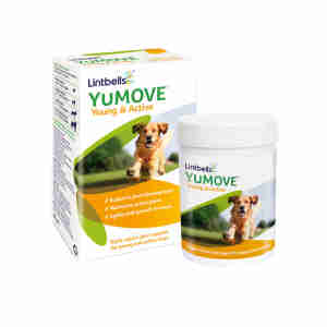 YuMOVE Young & Active Chien