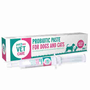 Pdsa Probiotic Paste For Cats And Dogs