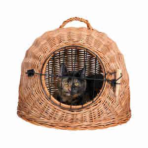 Panier de transport en osier Trixie pour chats