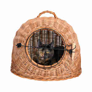 Trixie Wicker Cat Basket and Carrier