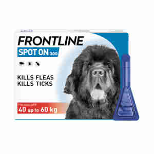 Frontline Spot On Flea & Tick Treatment XL Dog (40kg+)