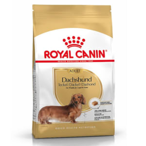 Royal Canin Dachshund Adult Teckel Adulte Plus De 10 Mois 1,5Kg