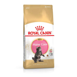 Royal Canin Maine Coon Kittenfutter trocken für Kätzchen