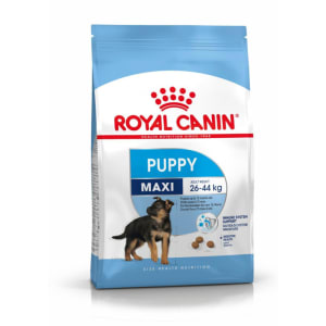 Royal Canin Maxi  Chiot Nourriture Croquettes
