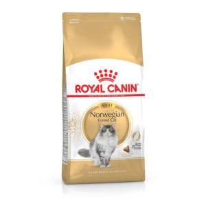 Royal Canin Norwegian Forest Cat Adult Trockenfutter für Norwegische Waldkatzen