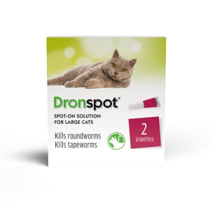 Dronspot Spot On Worming Solution for Large Cats