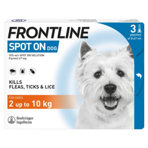Frontline Spot On Flea & Tick Treatment for Small Dogs (2-10kg)