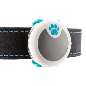 Sure Petcare Animo Activity & Behaviour Monitor for Dog