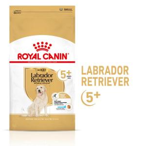 Royal Canin Labrador Retriever Ageing Adult 5+ Dry Dog Food