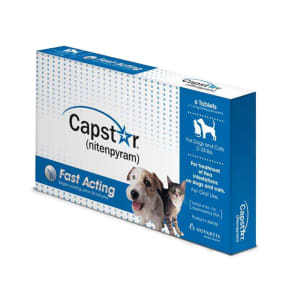 Capstar Flea Treatment Tablets for Cats and Small Dogs (1-11kg)