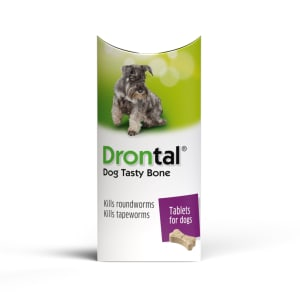Drontal Tasty Bone Wormer Tablets for Small and Medium Dogs (2 to 20kg)